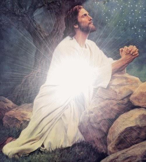jesus orando en el desierto imagenes