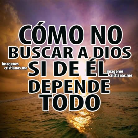 Busca a Dios
