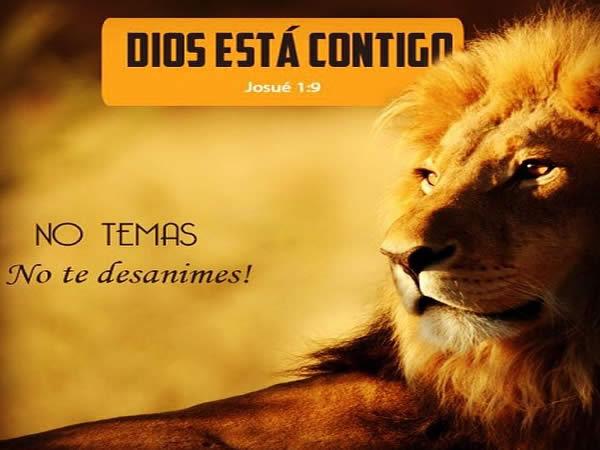 Dios es un León