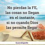 No pierdas la Fe