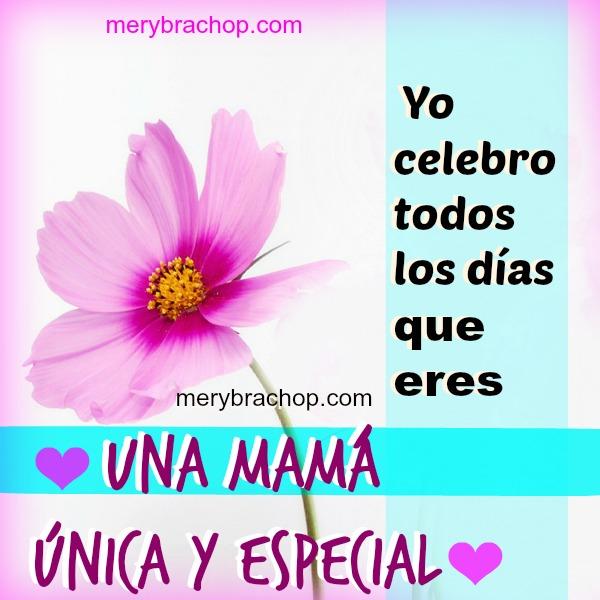 yo te celebro todos los día mamá