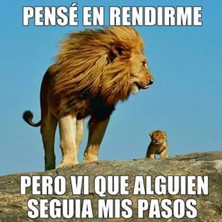 ejemplo para hijos, leon y su hijo