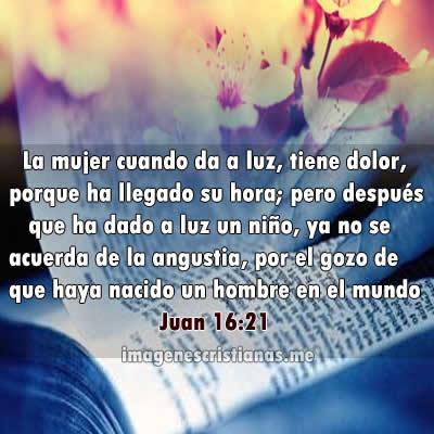 Versículos Bíblicos Para El Día De Las Madres Son De Gran Bendición