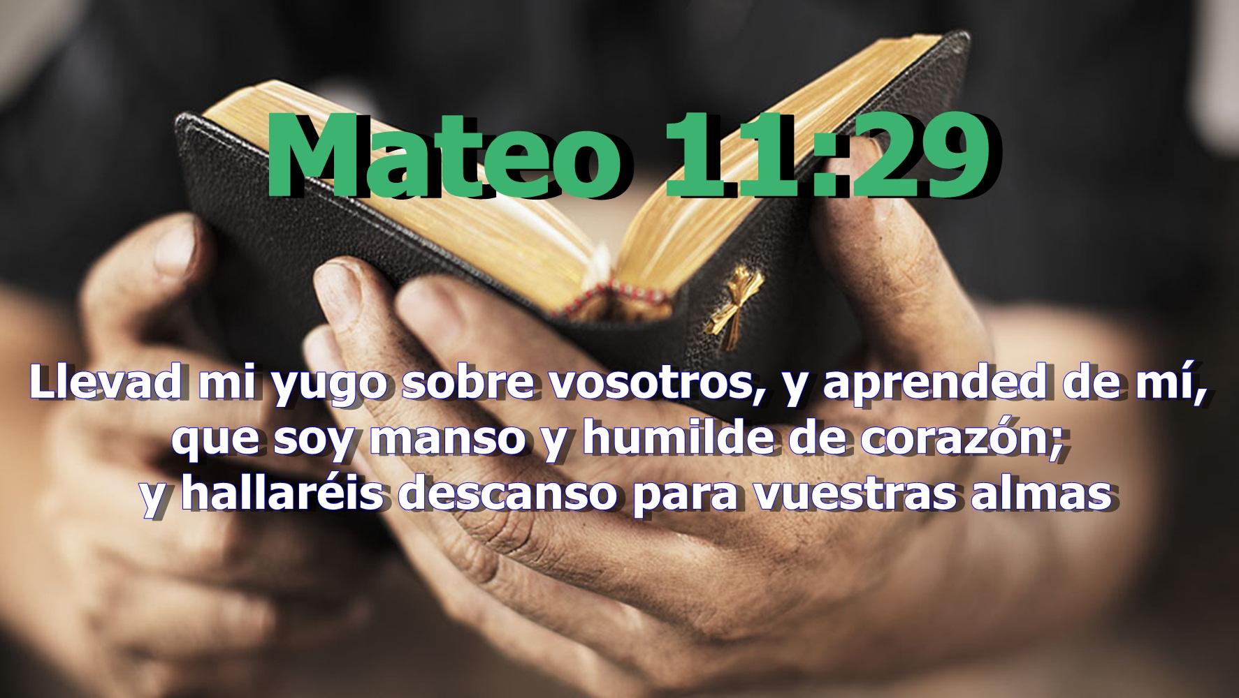 Mateo 11:29