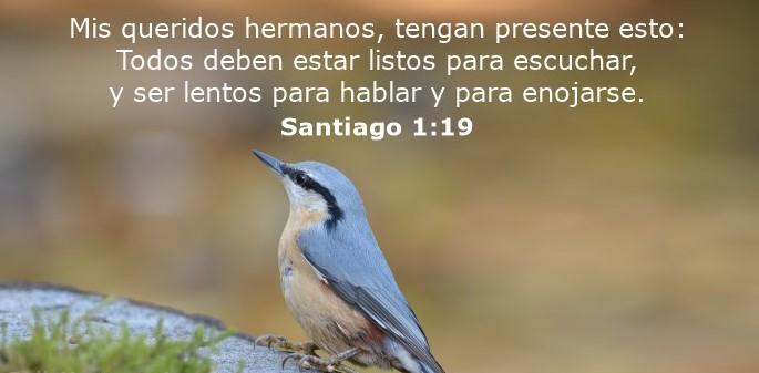 Versiculos De La Biblia De Animo: 70 Versículos Bíblicos Sobre El Autocontrol Y Dominio Propio