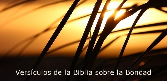 Efesios 4:32