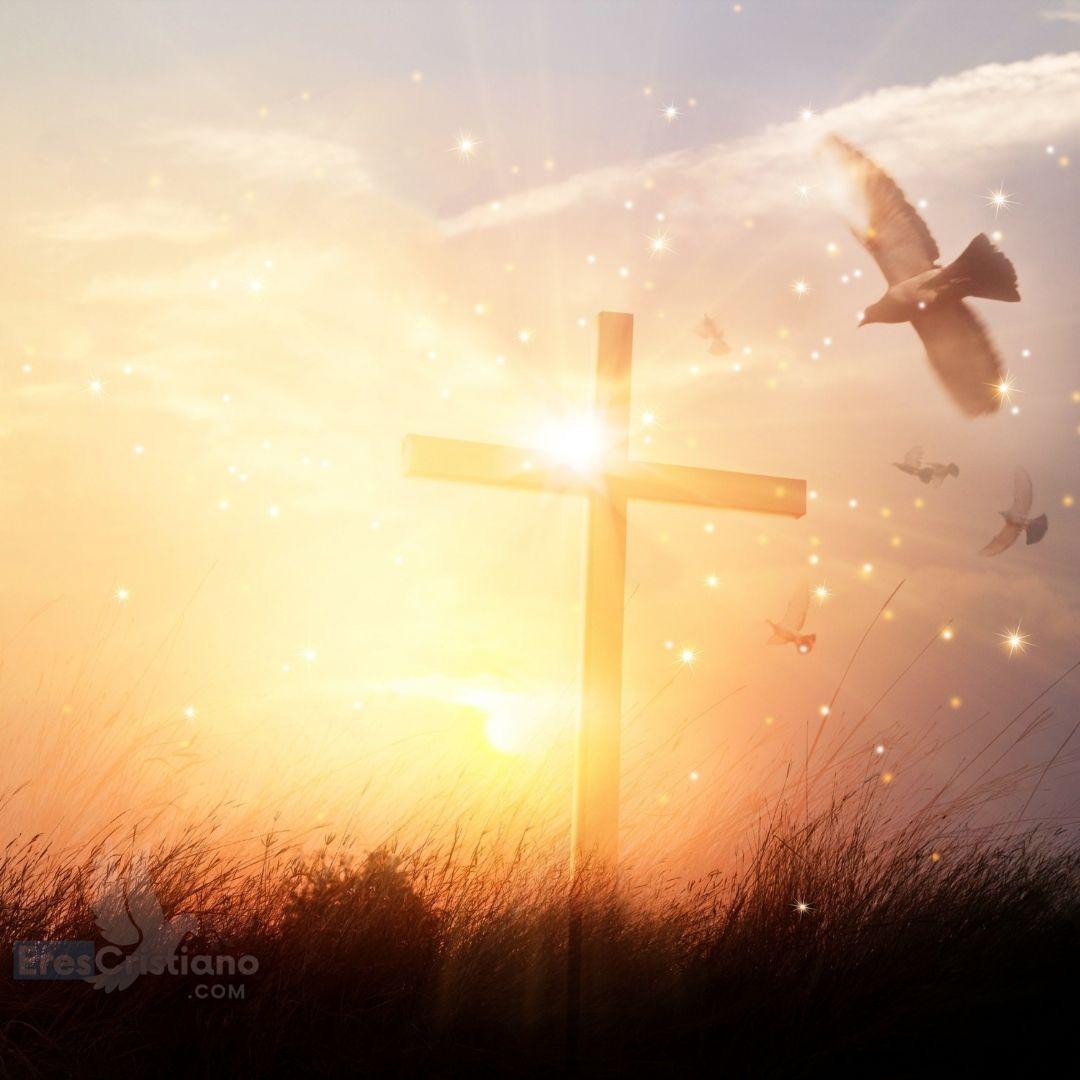 imagen de cruz y paloma