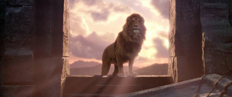 Imágenes imponentes de leones