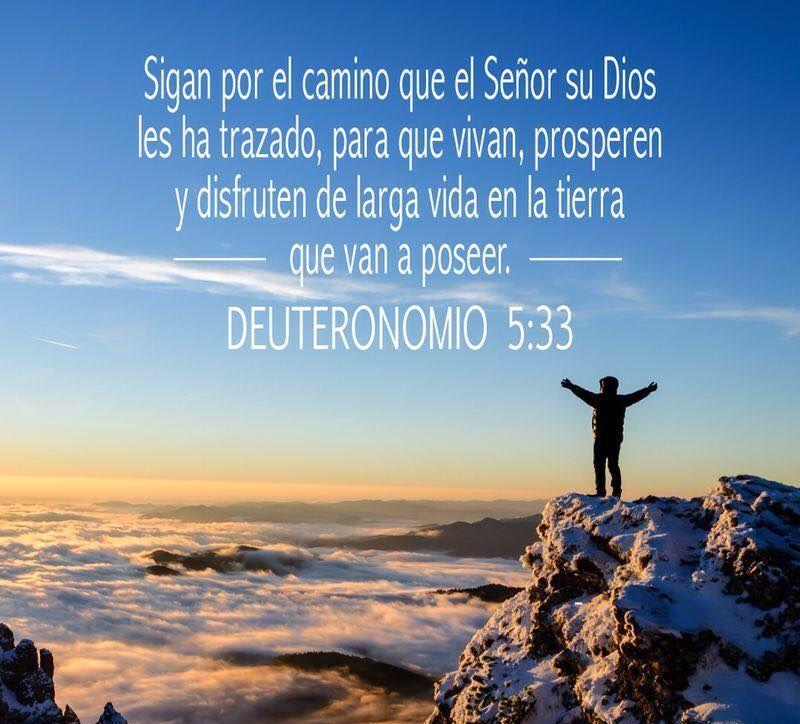 Deuteronomio 5:33
