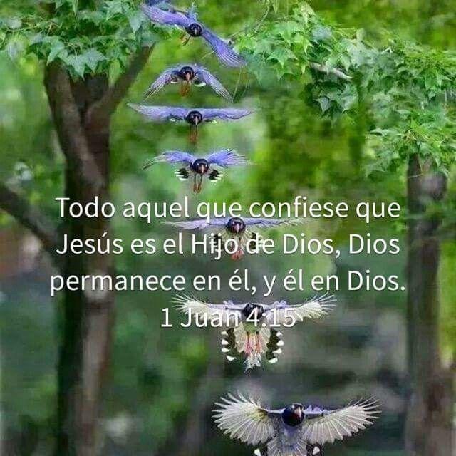 1 Juan 4:15