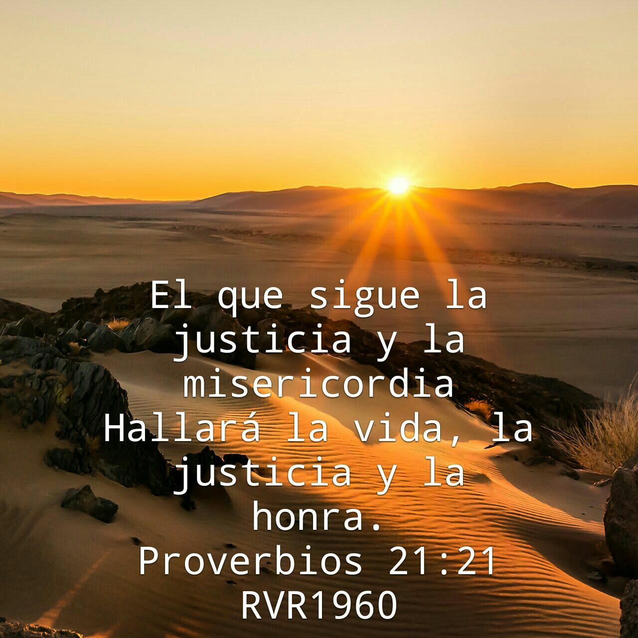 Proverbios 21:21