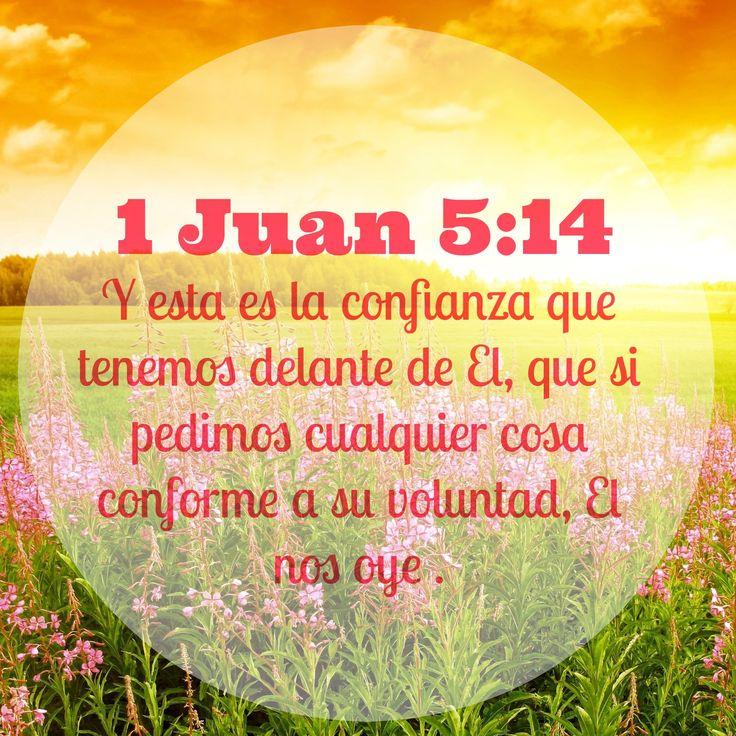 1 Juan 5:14