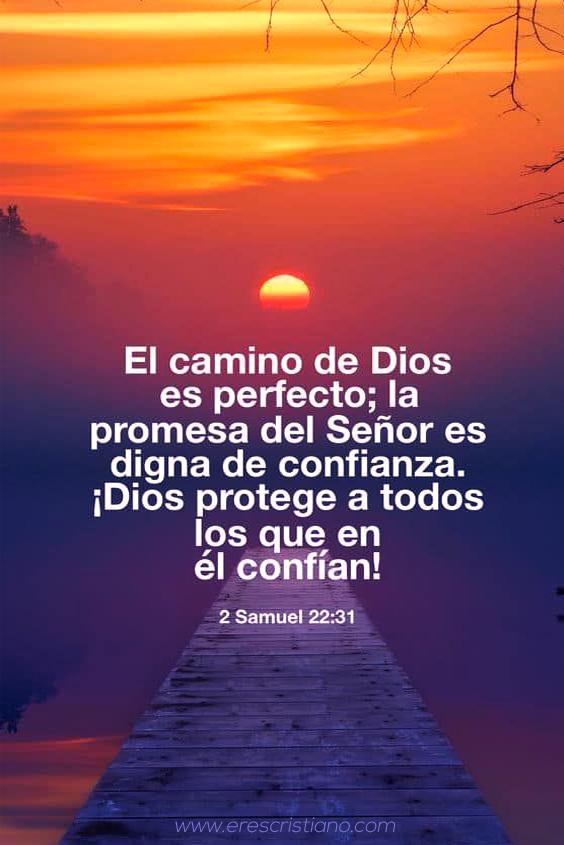Versículos de Protección de Dios