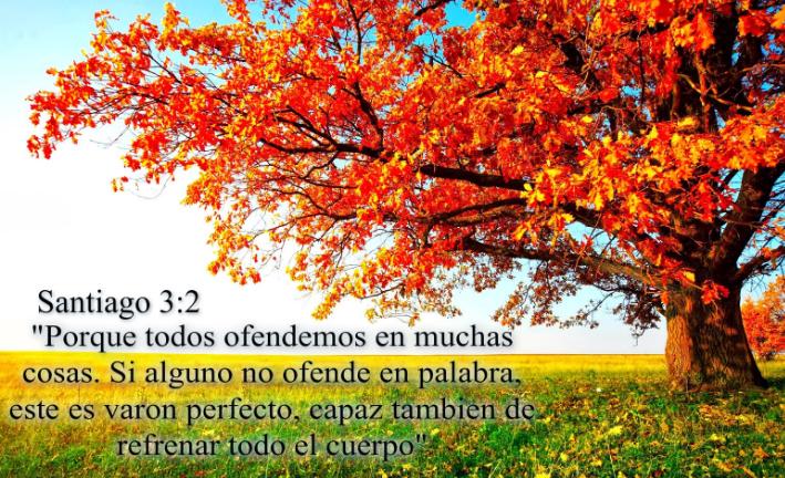 Santiago 3:2