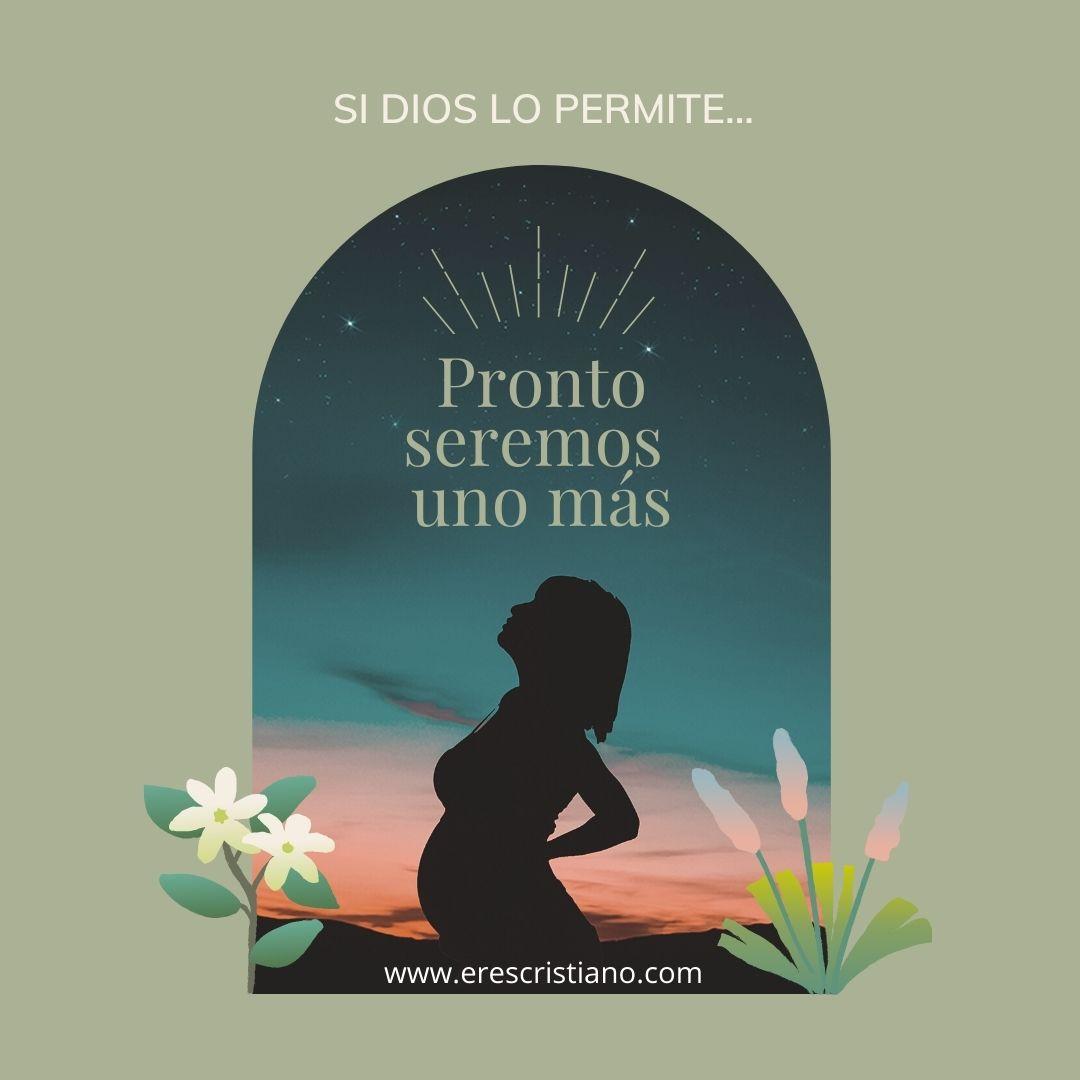 imagenes de barriguitas embarazadas