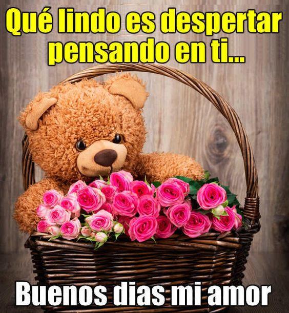 Las Mejores 100 Frases De Buenos Dias Mi Amor