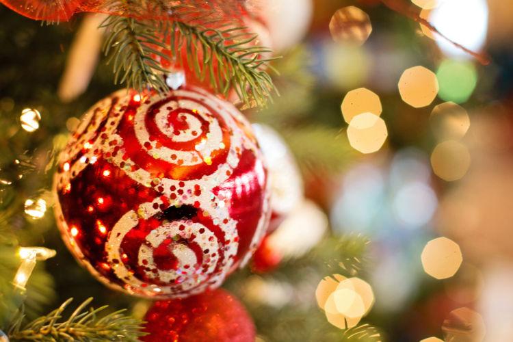 Celebración de la Navidad