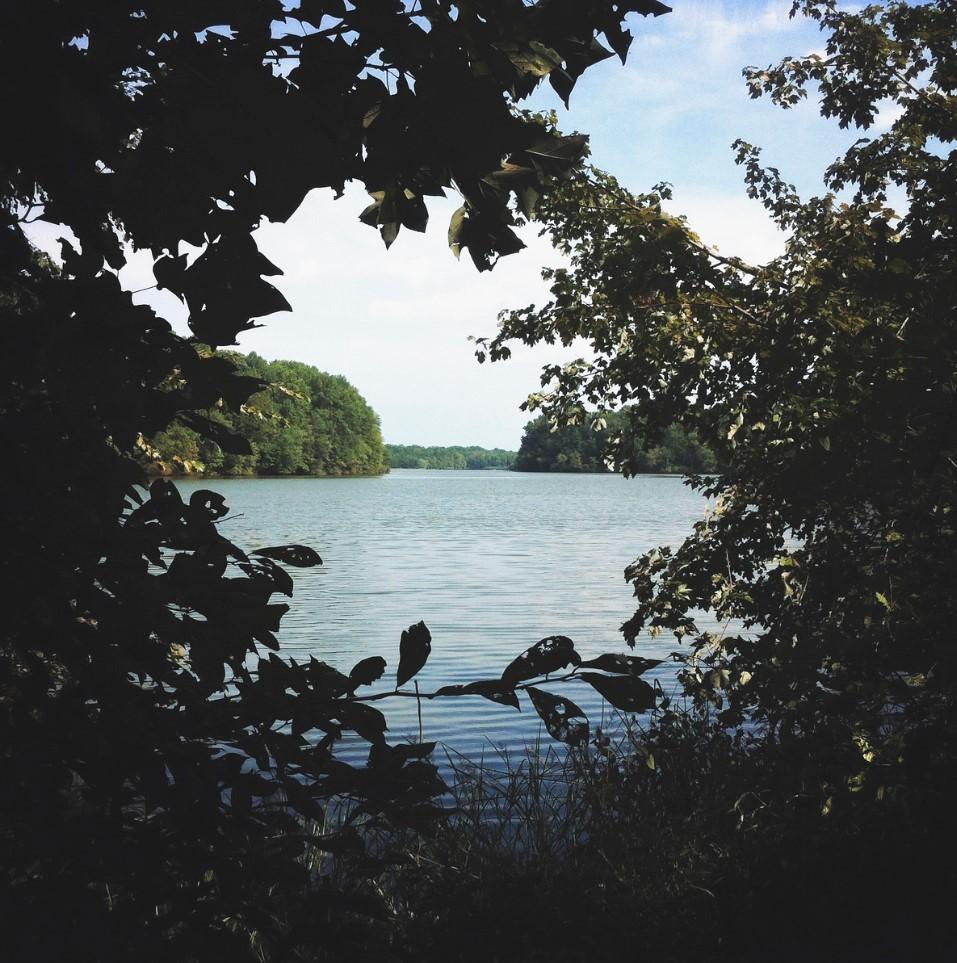 fotos de lagos