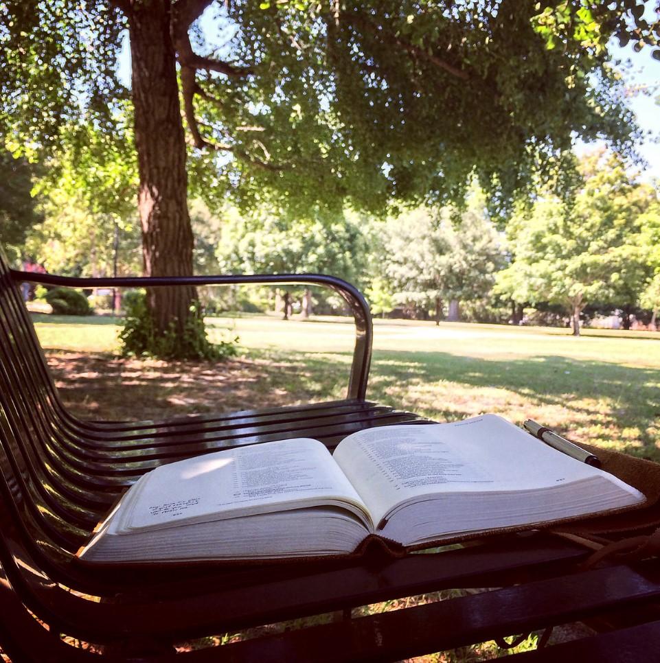 leyendo en parque