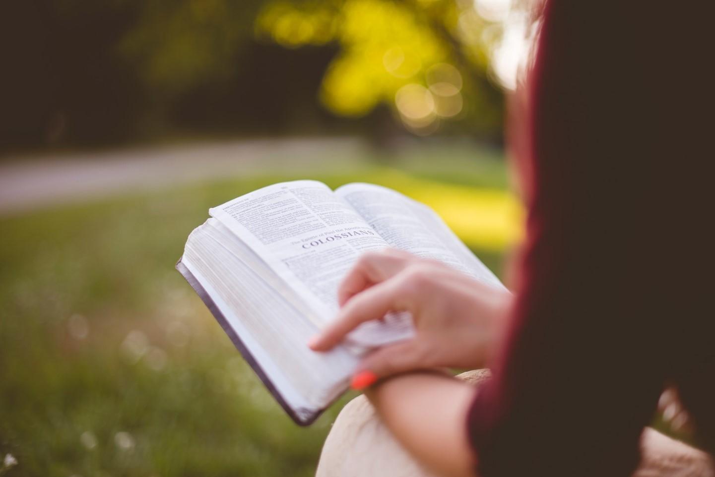 biblia en el campo