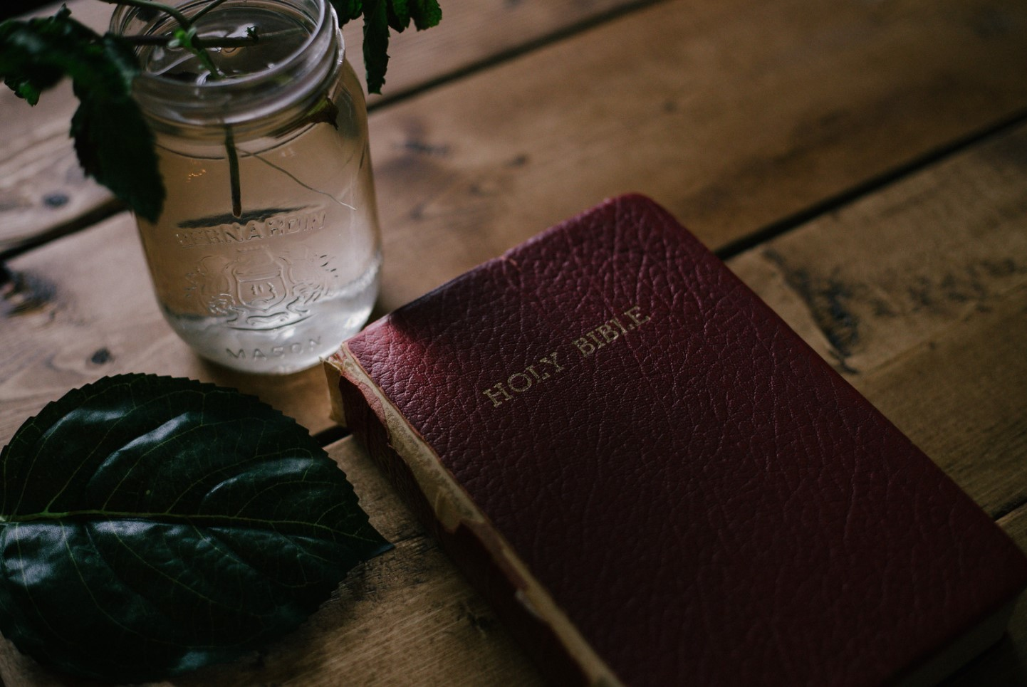 biblia roja
