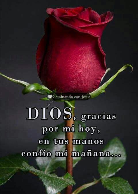 Dios guarda mi vida