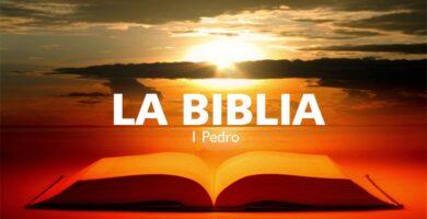 Audio libro 1 Pedro
