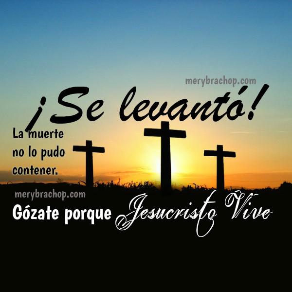 Jesús se levanto