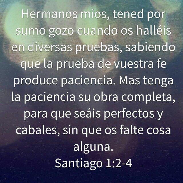 Paciencia en Dios
