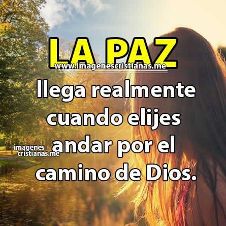 La paz es Dios