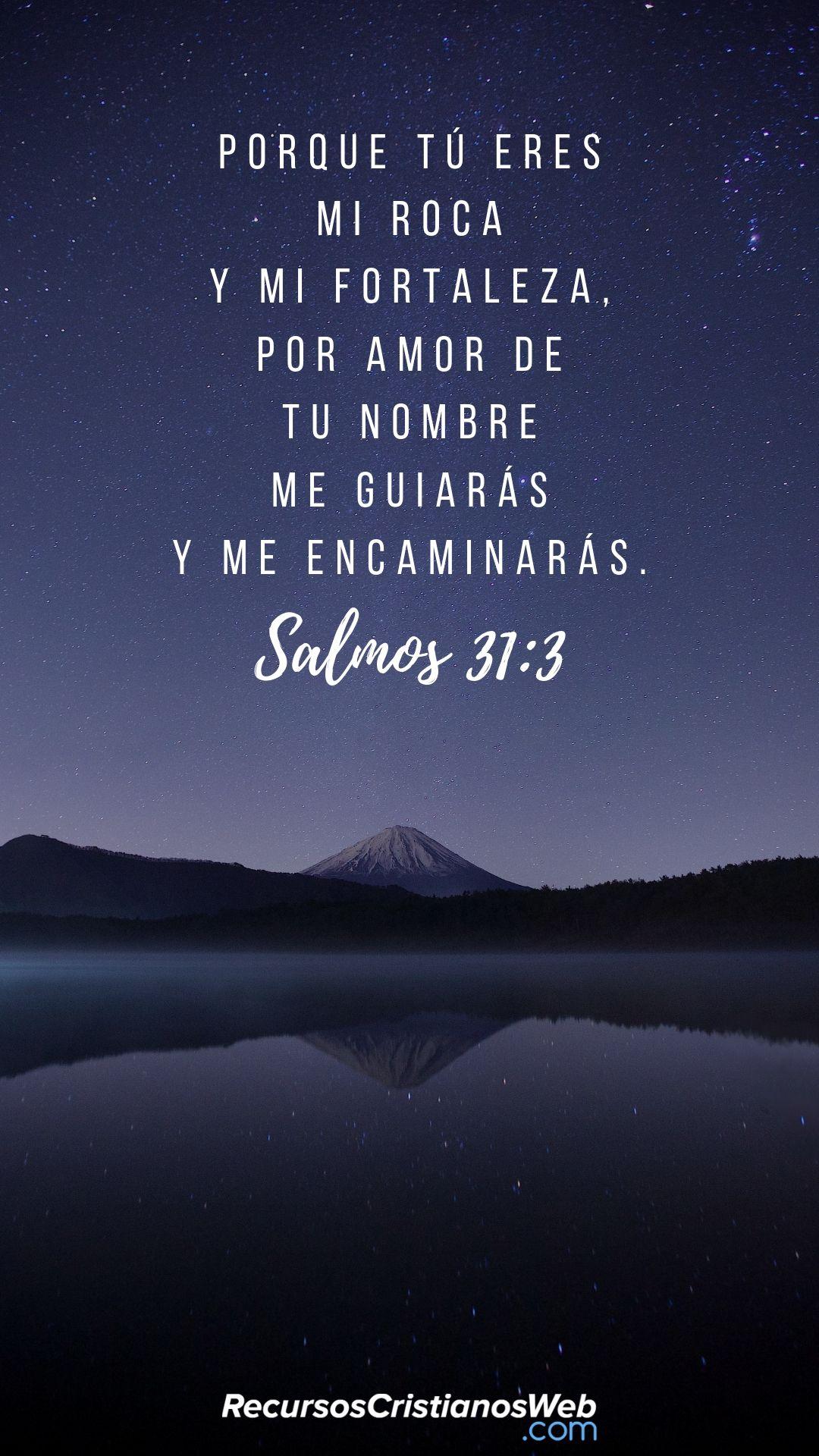 Salmos 31:3