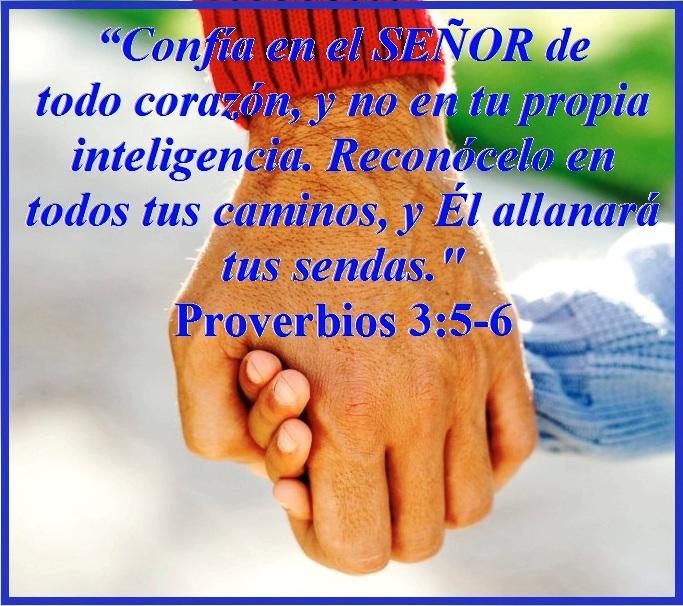 Proverbios 5-6