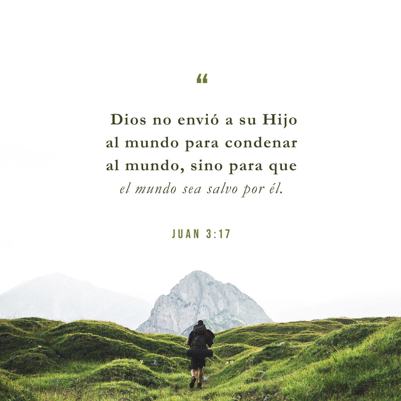 Dios nos dio vida eterna