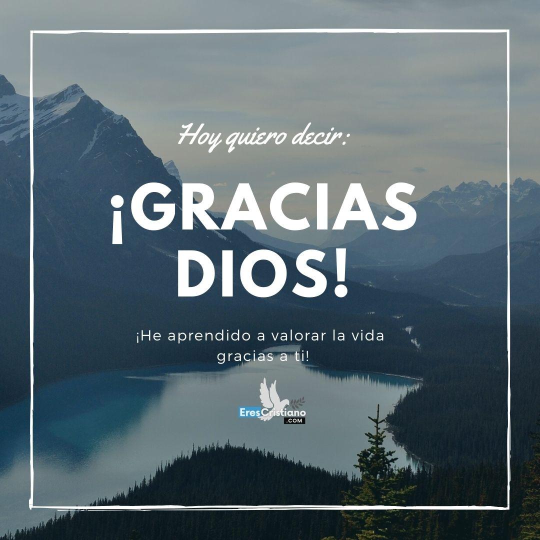imágenes de agradecimiento a dios por la vida