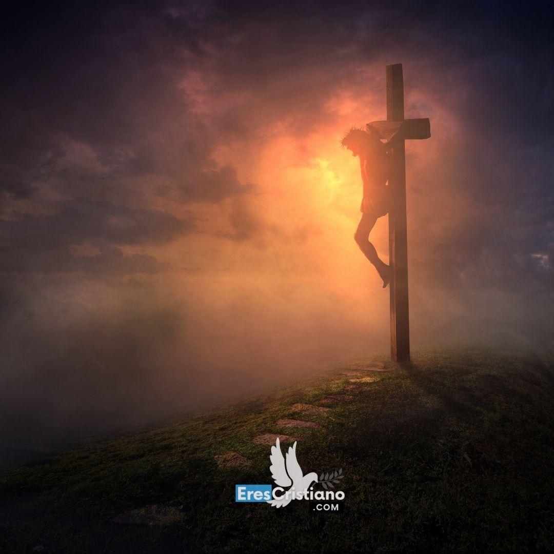 jesus en la cruz la pasion de cristo