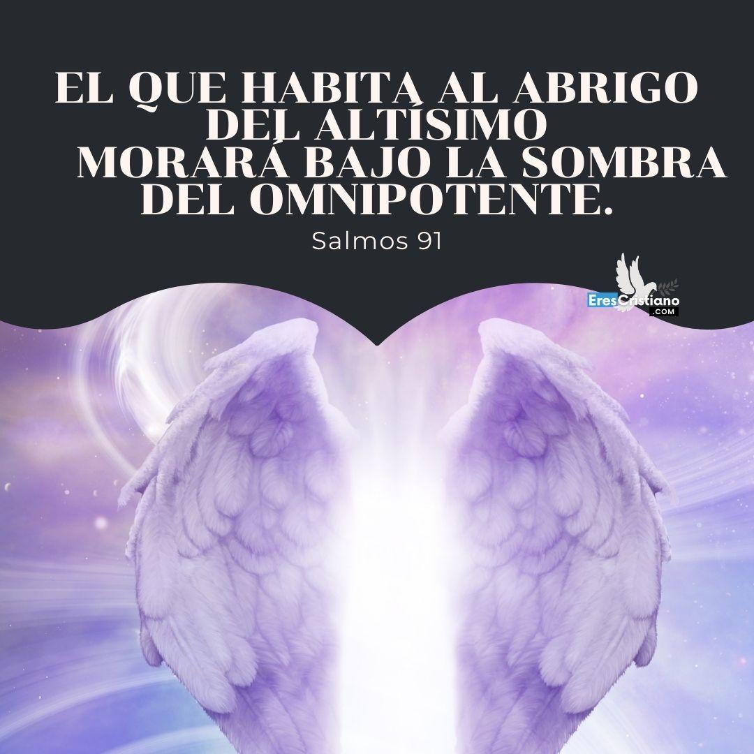 imagenes salmo 91 catolico